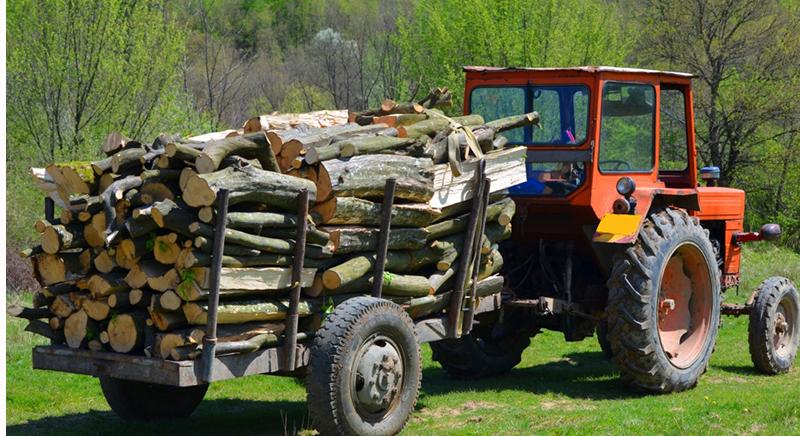 Se mai fura lemne