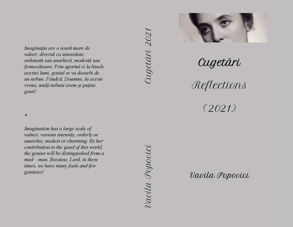 REFLECTIONS BY VAVILA POPOVICI